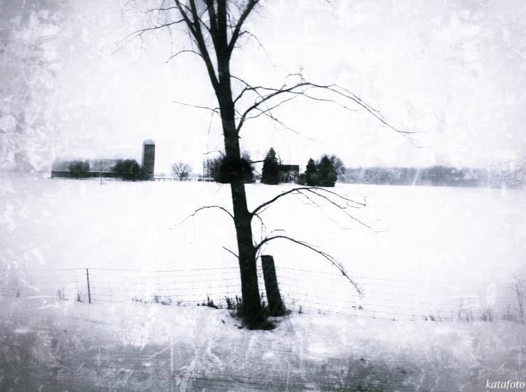 tree_mrkd