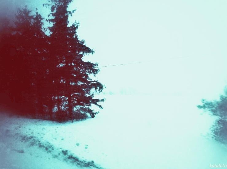 trees_mrkd