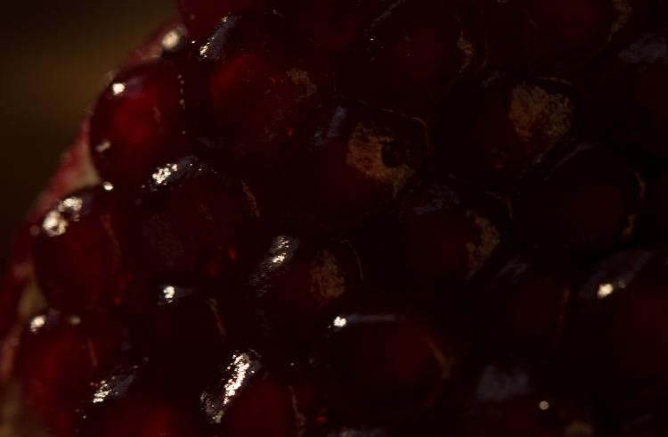 ecu pom berries