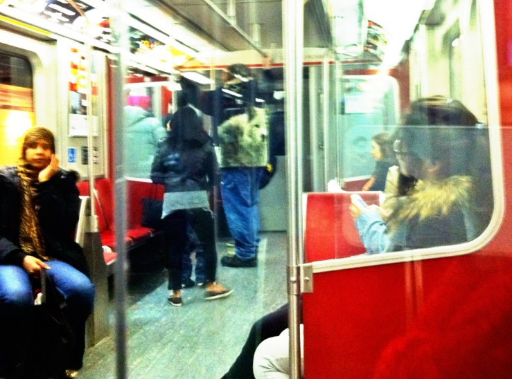 wolfman on subway