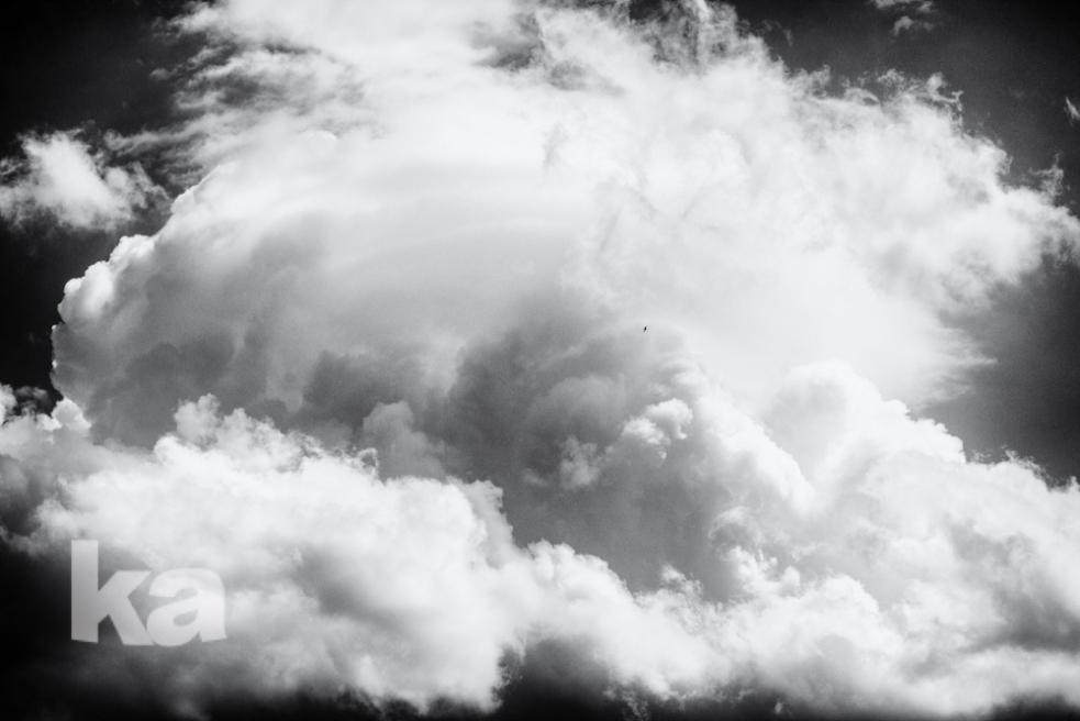 cloud tower tiniest bird slvrfx