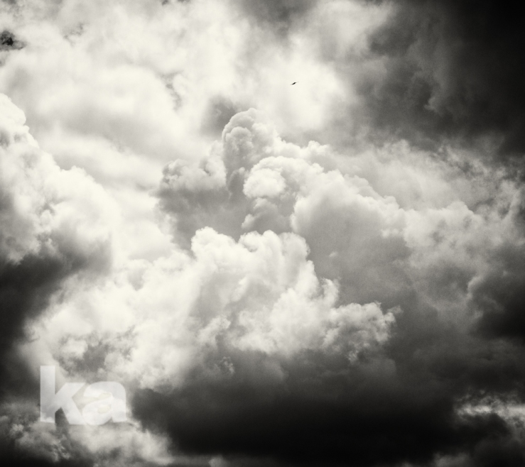 square towering clouds tiny bird