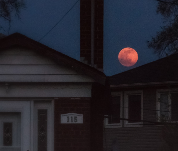 orange moon over bungalows