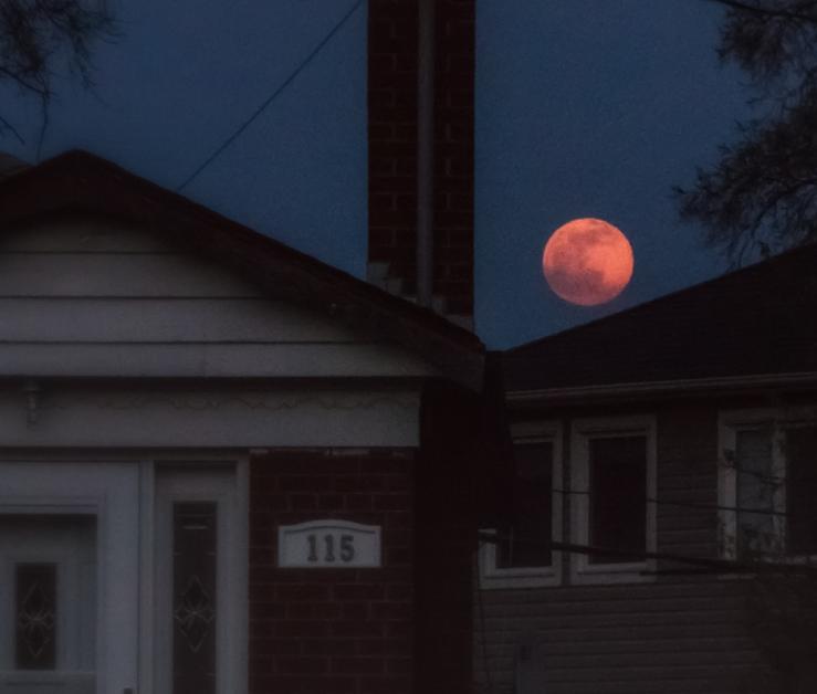 orange moon over bungalows