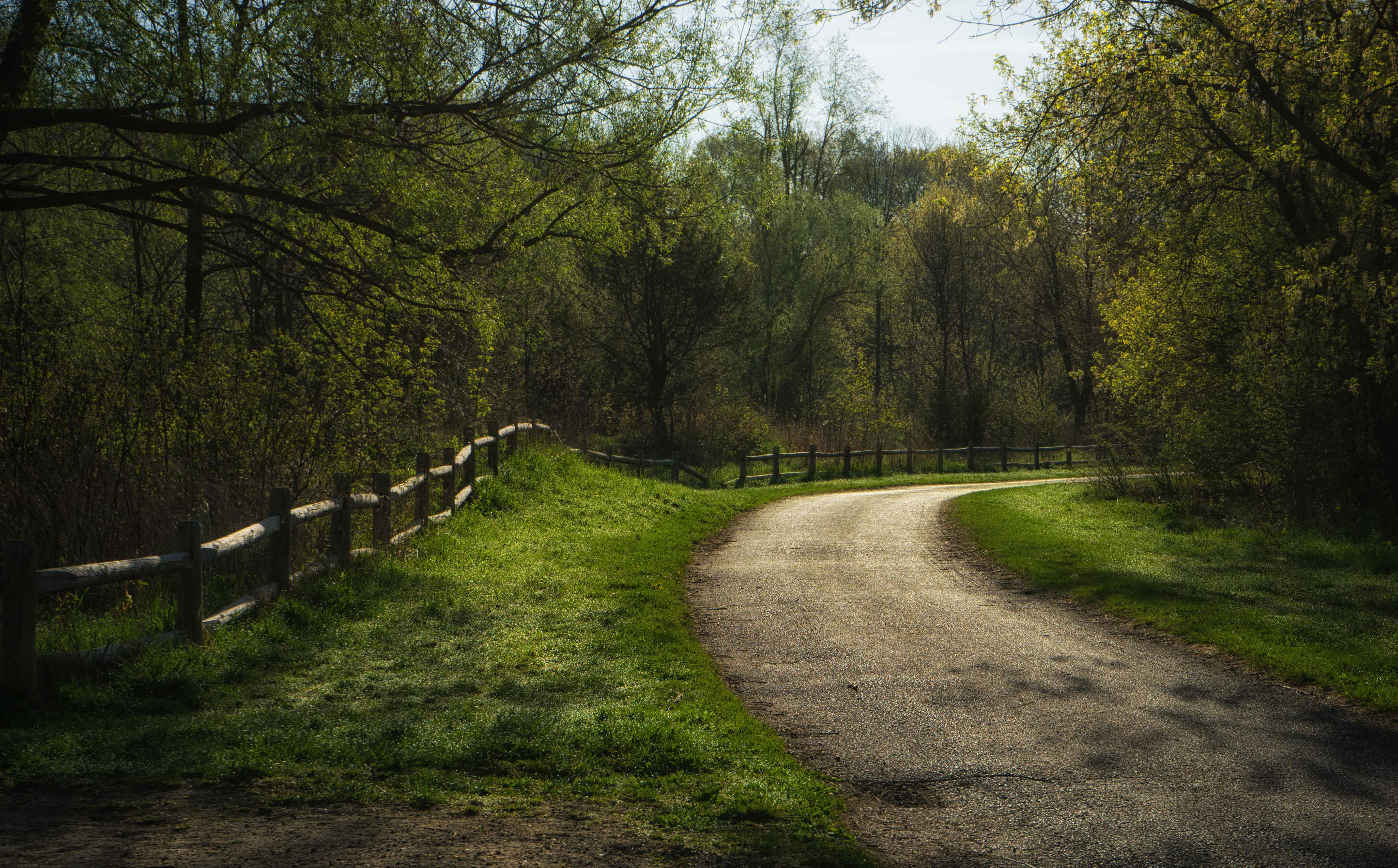 pathway turns