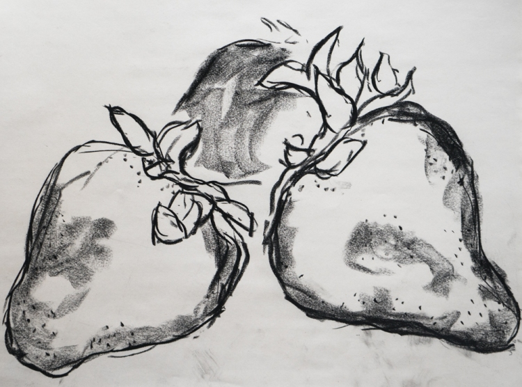 strawberries charcoal drawing