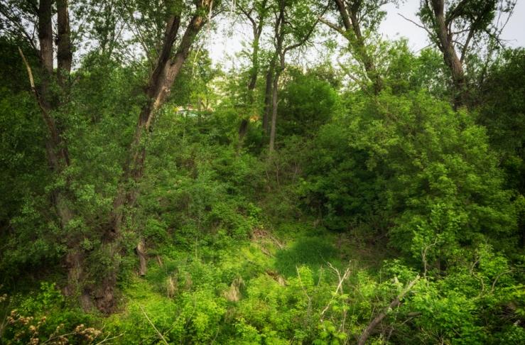 wide of ravine
