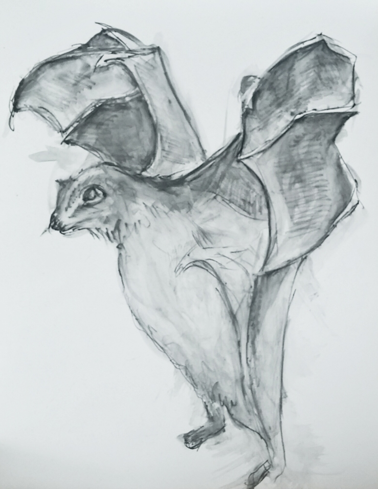 bat feet